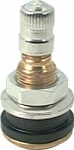 Brass Bolt in Valve Stem